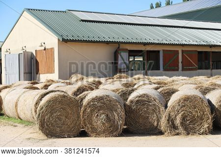 View Of A Rural Animal Farm With Hay Bales After Harvest. Hay Roll Bales On Countryside.  End Of Sum