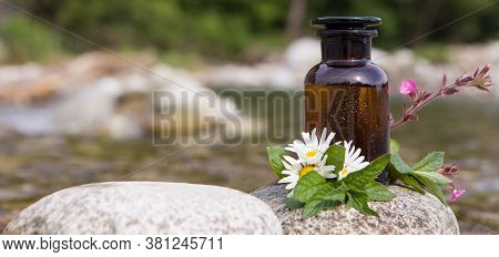 Panoramic Shot Of Flowers, Herbs, Bottles And Pills On Stone Background, Naturopathy Concept.