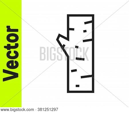 Black Line Birch Tree Icon Isolated On White Background. Vector