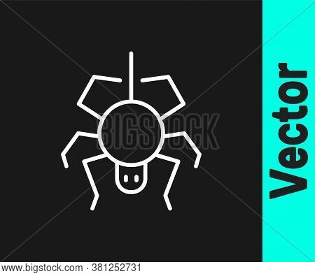 White Line Spider Icon Isolated On Black Background. Happy Halloween Party. Vector