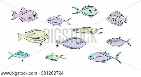 Vector Set That Represent Various Sea Animals. Abstract Decorative Cute Fish Illustration In Hand Dr