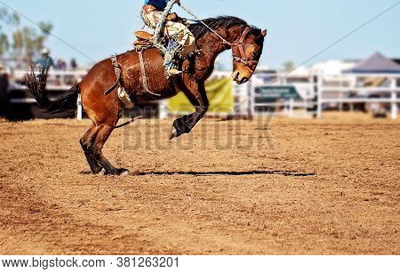 A Cowboy Riding A Bucking Bronco Horse At An Australian Country Rodeo