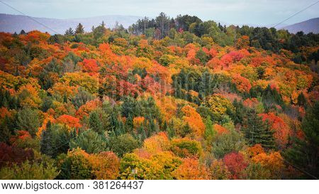 Fall foliage in rural Vermont during peak autumn time