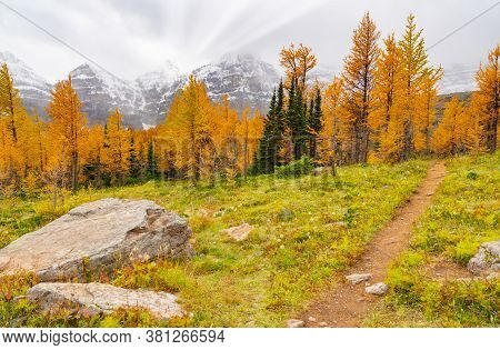Hiking Path In Autumn Mountains
