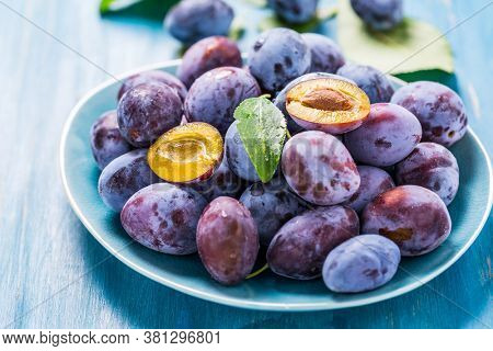 Freshly picked ripe plums (Zwetschgen) fruits in bowl on cyan background. Prepared for baking a cake or making marmalade.