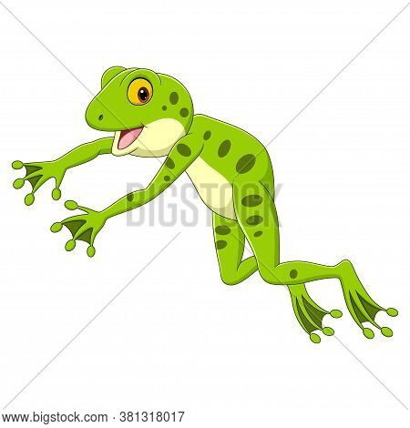 Vector Illustration Of Cartoon Funny Frog Leaping On White Background