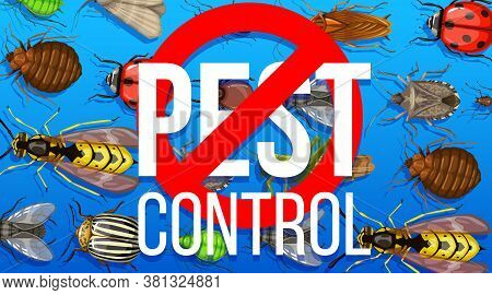 Pest Control Disinsection Service. Vector Poster With Insects And Prohibition Sign. Stinky Bug, Flea