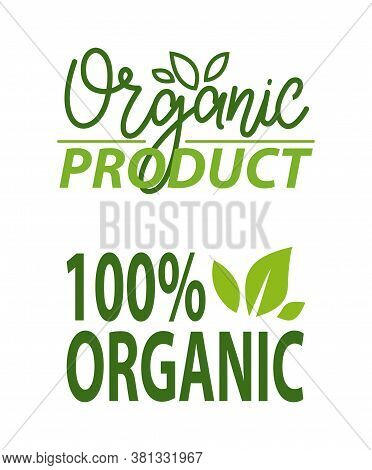 Organic Food 100 Percent Bio Meal Vector, Healthy Ingredients Ecological Production Foliage And Gree