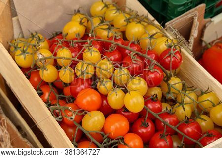 Red And Yellow Tomatoes In A Box For Sale