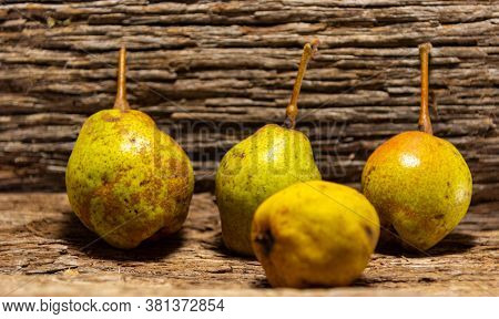 Fresh Fruits Of Pear (pyrus Communis L. Pear Is The Edible Fruit Of The Pear, A Tree Of The Genus Py