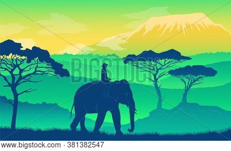 Elephant In The African Savanna At Sunset. Wild Acacia, Mountaines. Silhouettes Of An Animal And A P
