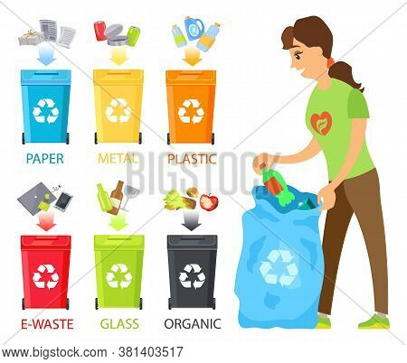 Sorting Waste Vector, Woman Volunteering, Bins Containers With Ecological Reusable Signs, Metal And