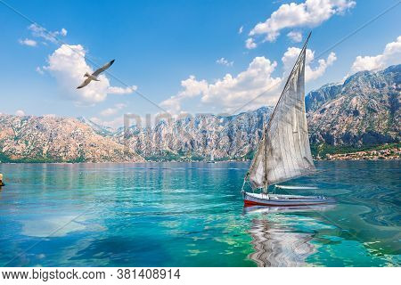 Bird And Sailboat In The Sea Among Mountains Of Montenegro