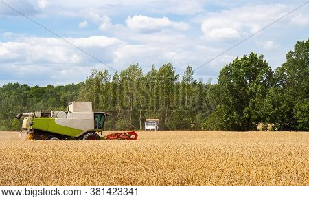 Combine Harvester Harvests Ripe Wheat In Field, Against Of Truck, Trees And Beauty Blue Sky With Clo