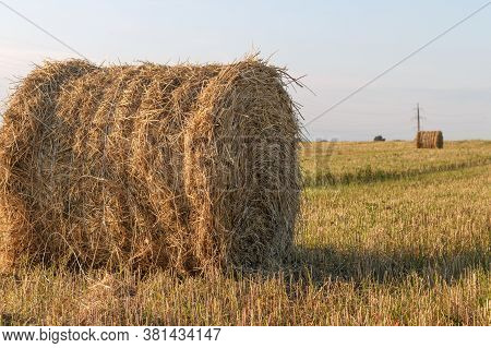 A Big Straw Haystack Roll Stringed In Front And Another Roll In The Background On Farm Field. Summer