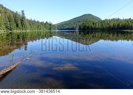 A Beautiful Fresh Pristine Lake Surrounded By Evergreen Forest Along The Cape Scott Trail On The Nor