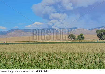 A Forest Fire Burning In Remote And Rough Terrain. In The Pine Gulch Of The Rocky Mountains Near Gra