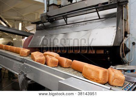 Pães cozidos na produção