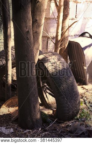 Discarded Tires And Junk Dumped In A Backyard