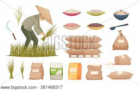 Rice Bags. Agricultural Products Brown And White Rice Transporting Food Ingredients Vector Illustrat
