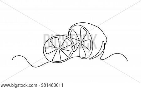 Continuous One Line Drawing. Lemon Lime Fruits. Vector Illustration. Continuous Line Drawing Of Lemo
