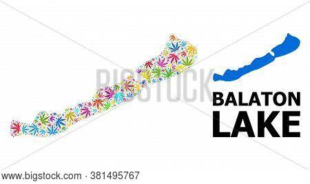 Vector Hemp Mosaic And Solid Map Of Balaton Lake. Map Of Balaton Lake Vector Mosaic For Hemp Legaliz