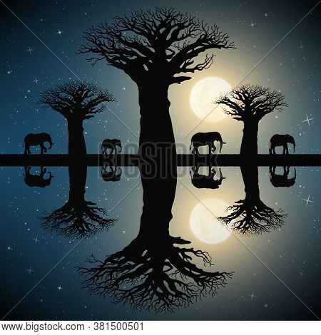 Elephant Family Walking Between Baobab Trees On Moonlight Night. Landscape With Big Animals In Savan