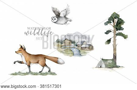 Forest Animals. Realistic Winter Cute Walking Wildlife Fox, Owl And Landscape With Tent Isolated Ill