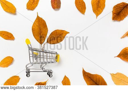 Autumn Sale: Shopping Cart With Yellow Fall Leaves Framed With Dry Leaves On White Background. Seaso