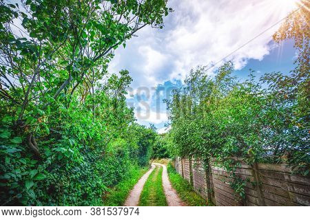 Wooden Fence By A Nature Trail In The Summer. Road Going Through A Green Nature Area With The Sun Sh