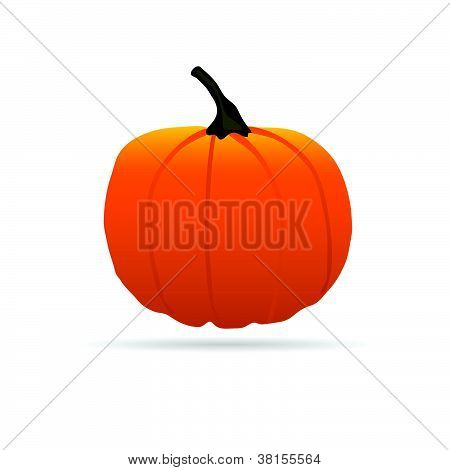 Pumpkin On A Color For Halloween Vector Illustration