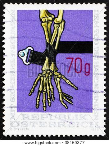 Postage stamp Austria 1975 Safety Belt and Skeleton Arms