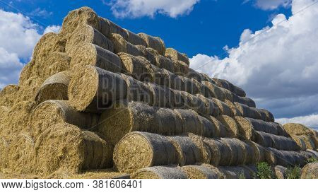 A Lot Of Bales Of Hay Stacked On Top Of Each Other Against The Blue Sky. Harvesting Hay, Dry Grass
