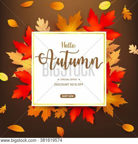 Hello Autumn Word And Autumn Dry Leaf Falling On A White Background, Dry Of Maple Leaf, For Autumn D