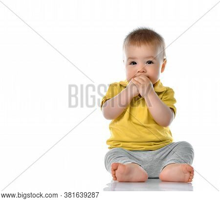 Infant Child Baby Boy Toddler Studio Portrait. Little Kid Sitting On Floor Holding Both Hands In Mou