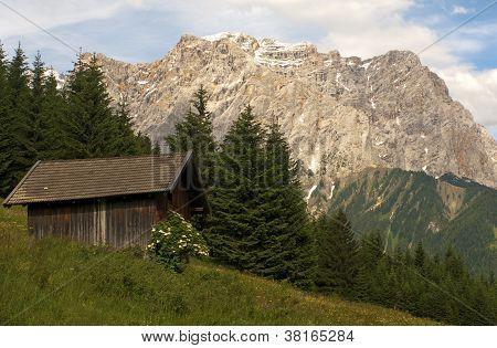 Alp with alp hut
