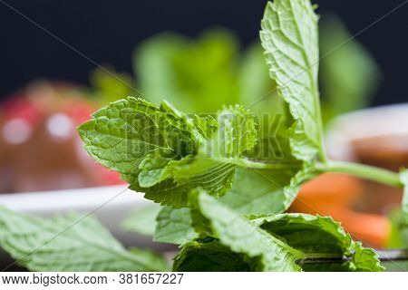 Fresh Green Flavored Mint Along With Other Food Items And Red Strawberries, Focus On Mint Leaves