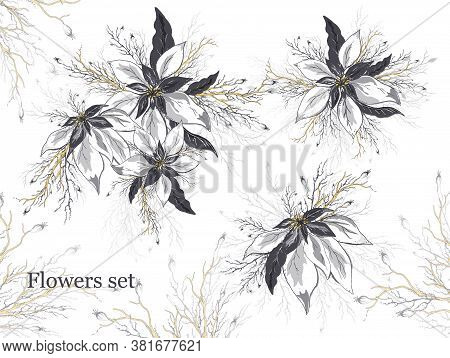 Vector Set Of Poinsettia And Leaf Flowers Isolated On A White Background. Realistic Hand-drawn Doodl