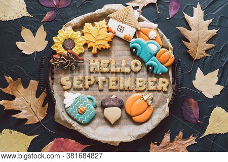 Hello September. Multicolored Autumn Cookies On A Black Background. Autumn Concept