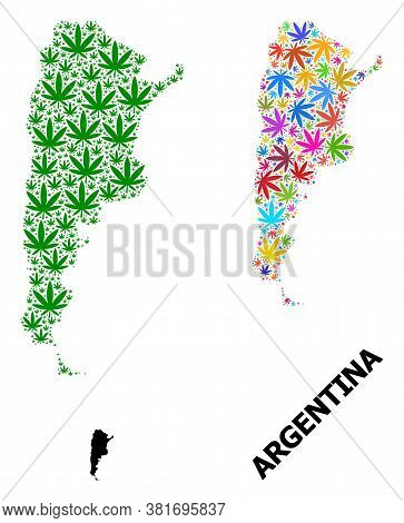 Vector Cannabis Mosaic And Solid Map Of Argentina. Map Of Argentina Vector Mosaic For Cannabis Legal