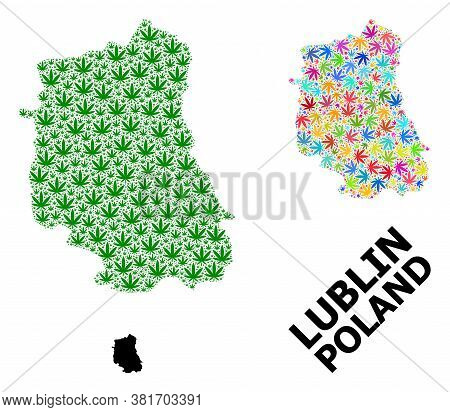 Vector Hemp Mosaic And Solid Map Of Lublin Province. Map Of Lublin Province Vector Mosaic For Hemp L
