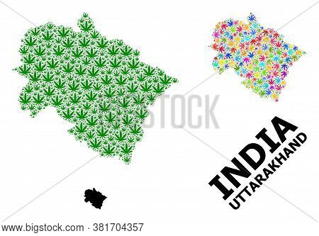 Vector Weed Mosaic And Solid Map Of Uttarakhand State. Map Of Uttarakhand State Vector Mosaic For Ma