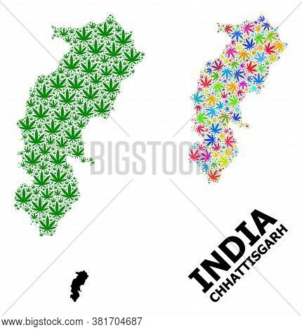 Vector Weed Mosaic And Solid Map Of Chhattisgarh State. Map Of Chhattisgarh State Vector Mosaic For