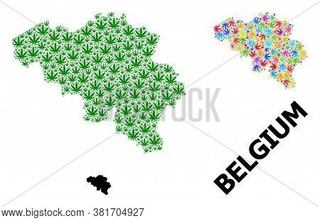 Vector Cannabis Mosaic And Solid Map Of Belgium. Map Of Belgium Vector Mosaic For Cannabis Legalize