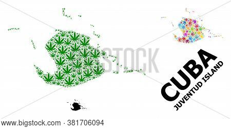 Vector Weed Mosaic And Solid Map Of Juventud Island. Map Of Juventud Island Vector Mosaic For Weed L