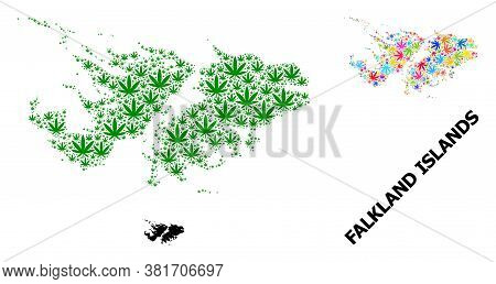 Vector Weed Mosaic And Solid Map Of Falkland Islands. Map Of Falkland Islands Vector Mosaic For Weed
