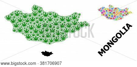 Vector Hemp Mosaic And Solid Map Of Mongolia. Map Of Mongolia Vector Mosaic For Hemp Legalize Campai