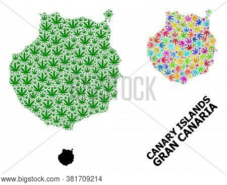 Vector Marijuana Mosaic And Solid Map Of Gran Canaria. Map Of Gran Canaria Vector Mosaic For Marijua