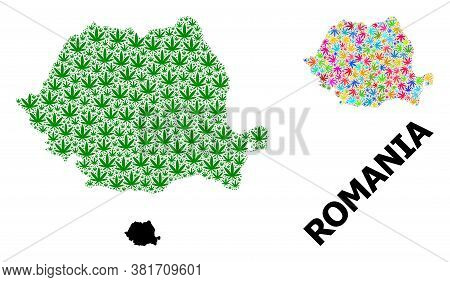 Vector Marijuana Mosaic And Solid Map Of Romania. Map Of Romania Vector Mosaic For Marijuana Legaliz