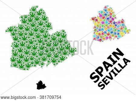 Vector Cannabis Mosaic And Solid Map Of Sevilla Province. Map Of Sevilla Province Vector Mosaic For